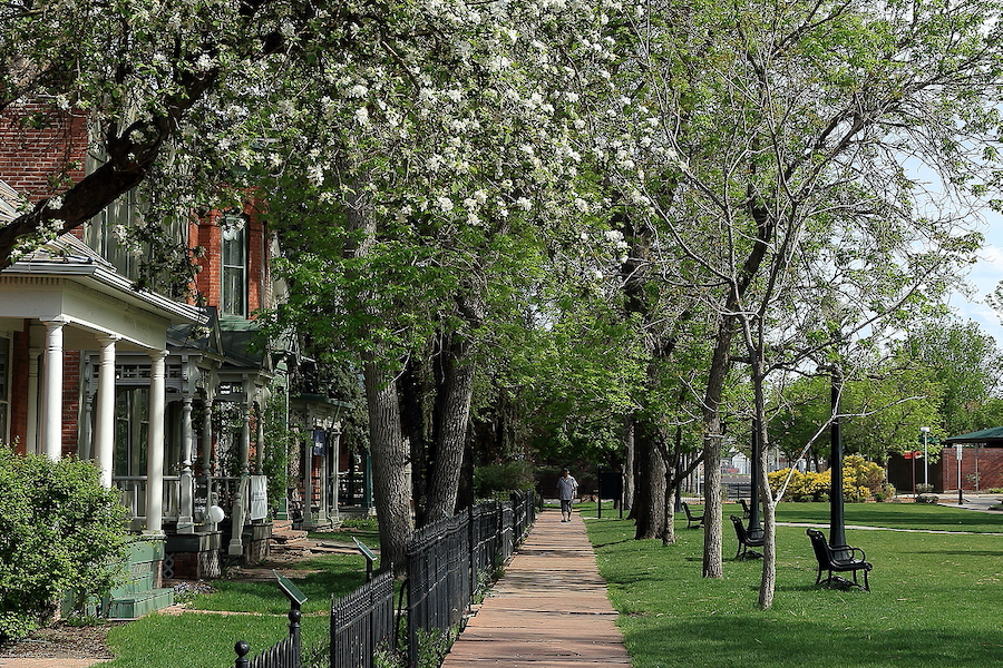 U Denver Boulder